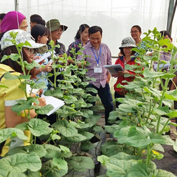Enhancing the capabilities of Vietnamese key-trainers in protected horticulture in South Vietnam