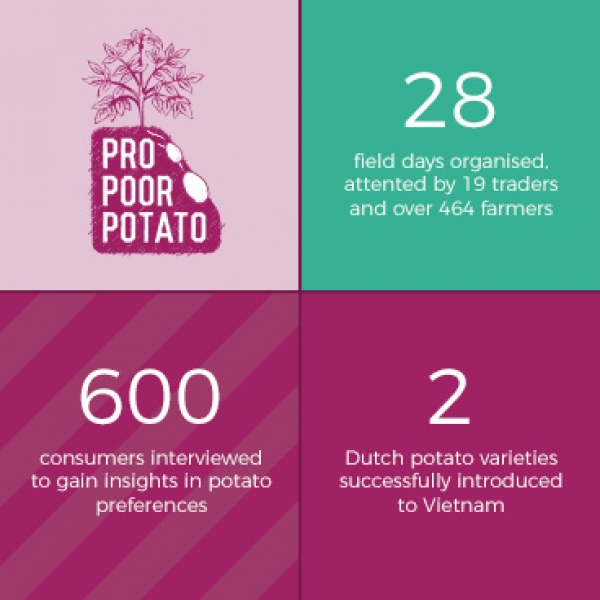 Vitalizing the Vietnamese potato sector: results year 3