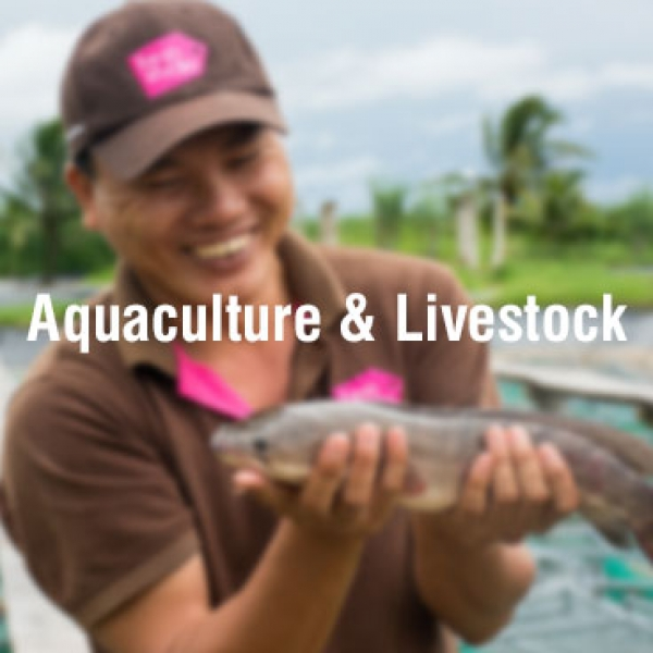 Aquaculture Sourcing and Quality Assurance Consultant